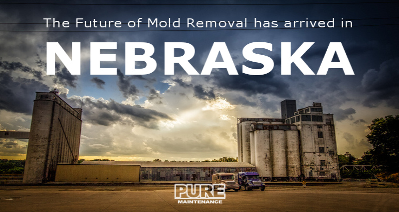 Kill Mold Everywhere; Non-Toxic Dry Fog; Fast & Effective: Pure Maintenance Nebraska